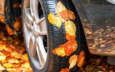 De herfst staat voor de deur.